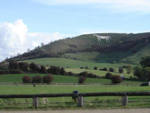 The Westbury White Horse - by legend, created to commemorate Alfred's victory at Edington.